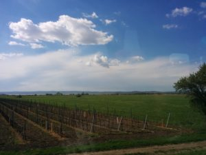 Travelling in Burgenland
