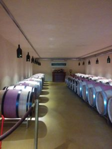 Newest cellar at Anton Bauer